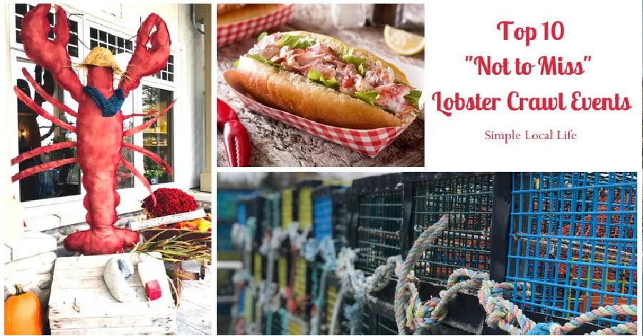 Top 10 Lobster Crawl Events - Simple Local Life Feature