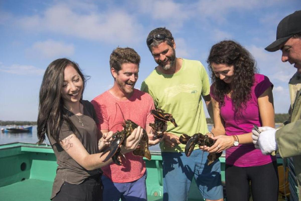 Sea-to-Table Lobster Adventure
